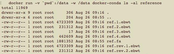 Docker_bowtie_ls